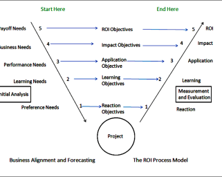 ROI_V Model