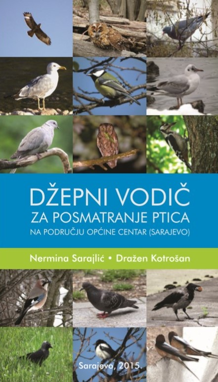 Pocket guide to birdwatching in Center Municipality (Sarajevo)