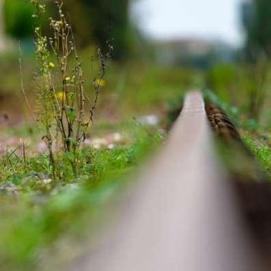 En attendant le train des Mouettes...