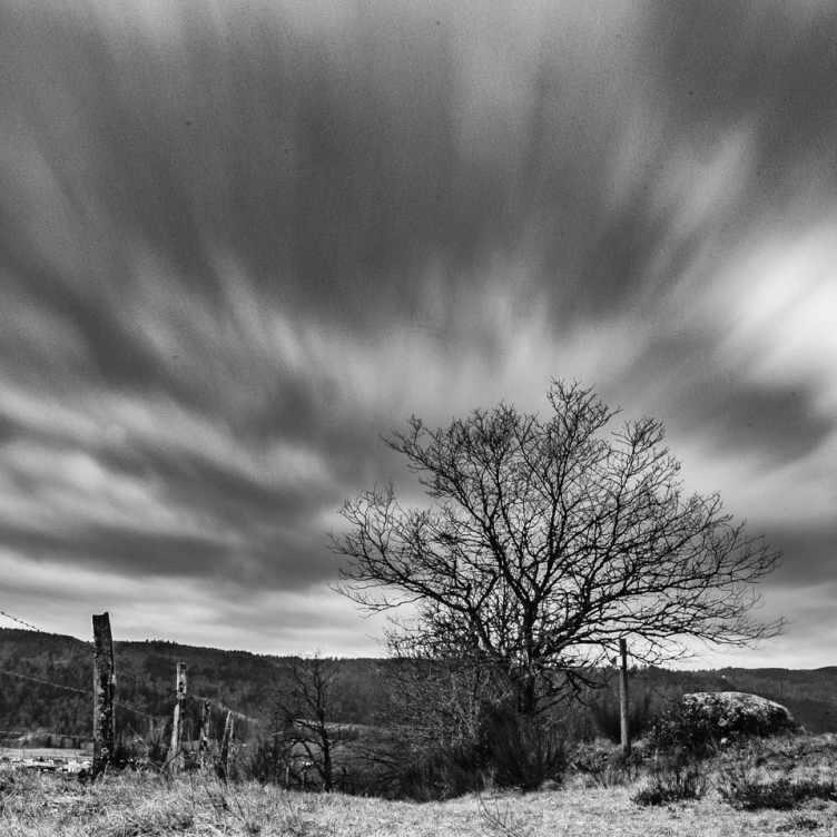 Grand vent sur les Vosges