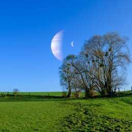 J7 - Ce matin, j'ai réussi à voir Bételgeuse se lever !