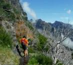 Sur le sentier du Pico Do Ruivo