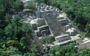 Calakmul Campeche zona arqueol+ogica