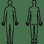 【人体図 – 白黒線画】評価記録・カルテ用イラスト – リハイラスト