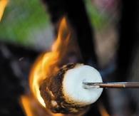34384-Roasting-Marshmallows