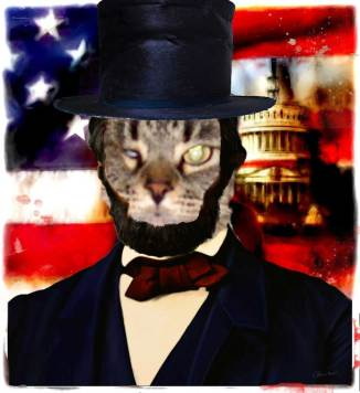 cat-lincoln