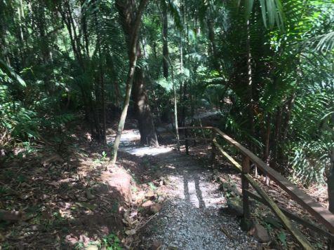 Hiking trail at Parque Metropolianto