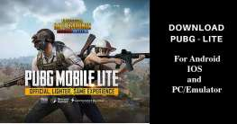 Pubg Mobile Lite Download