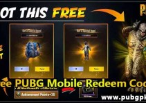 pubg mobile + Pung lite character voucher redeem code generator 2021