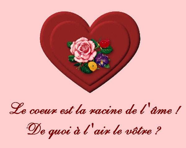 Magnifique Citations Damour Et Magnifique Citations
