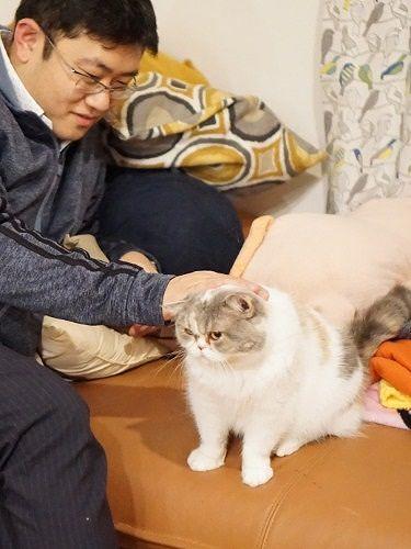 異色のマンガ家は猫が大好き コスプレ姿に猫ビックリ