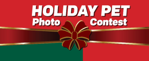Holiday Pet Photo Contest Winners