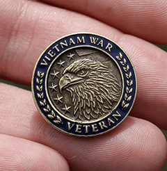 Vietnam War Veteran Lapel Pin