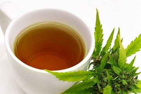 How To Make Marijuana Tea - Leaf Science