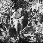 New Adventures of Tarzan (1935)