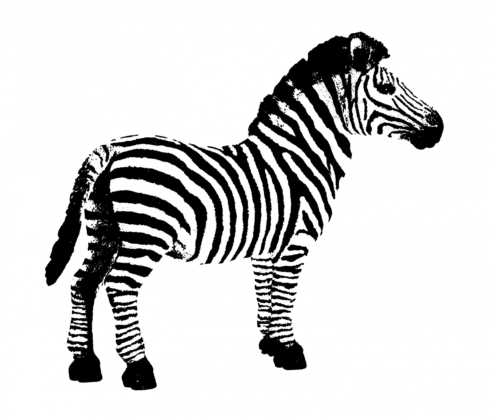 Zebra Clipart Free Stock Photo