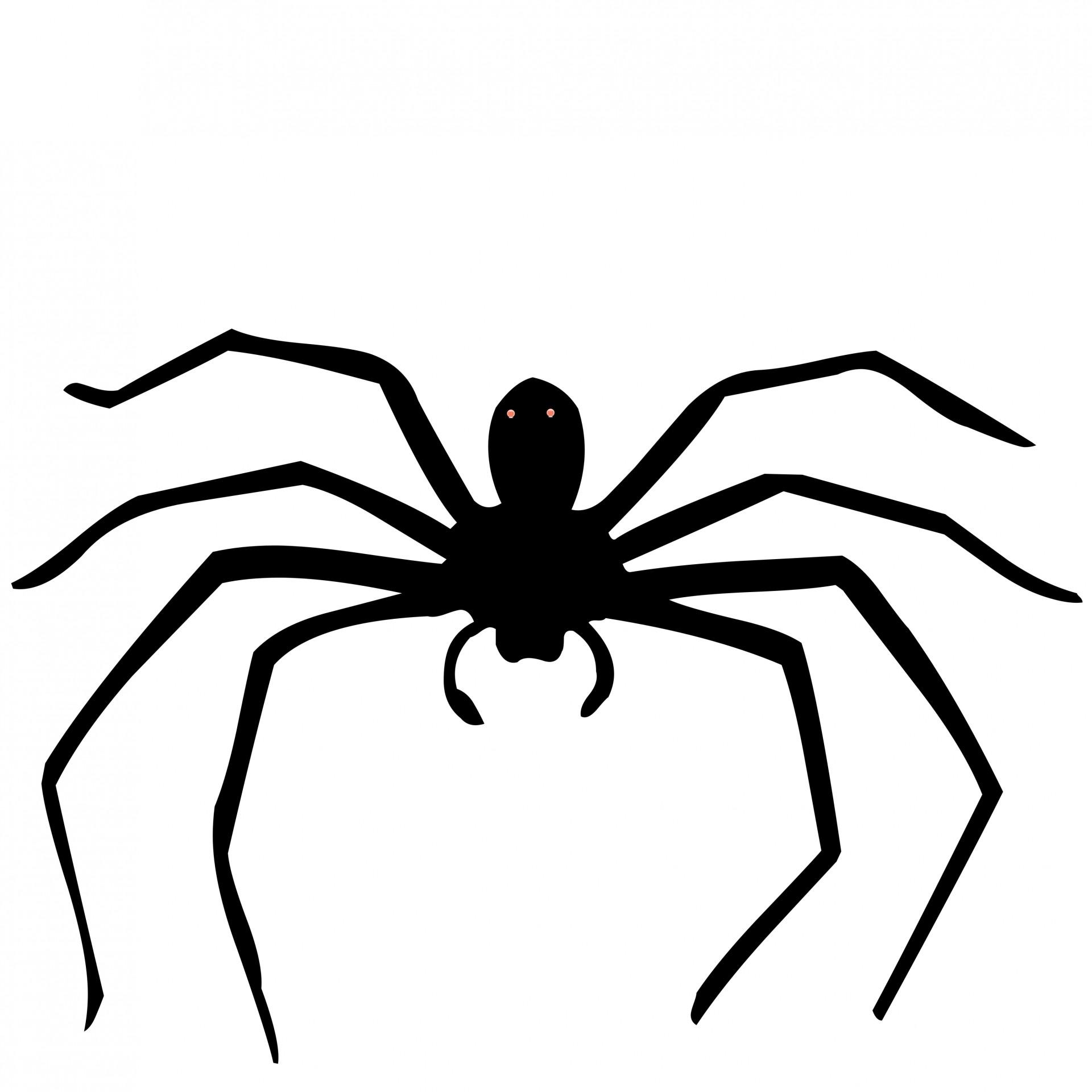 Spider Free Stock Photo