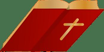 Bible open vector image