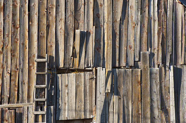 Aging Barn Wood, Tom Kelly, https://flic.kr/p/bpHubd, CC-BY-NC-ND