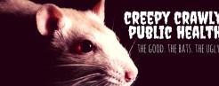 creepy crawly fb cover