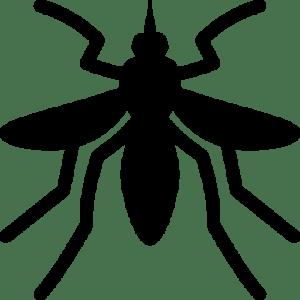 -Mosquito-icon