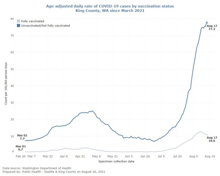 Graph showing age-adjusted daily rate of COVID-19 cases by vaccination status in King County since March 2021. The line representing fully vaccinated cases remains mostly flat, with a small increase beginning in August. High point is 10.6/100,000 people on August 17. The line representing unvaccinated cases is always higher and begins spiking in July, with a high of 77.2 cases/100,000 people on August 17.