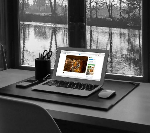 publicidadeviral-marketing-versus-web-design