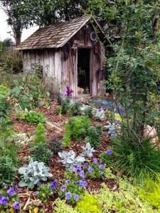 Garden treasure8_