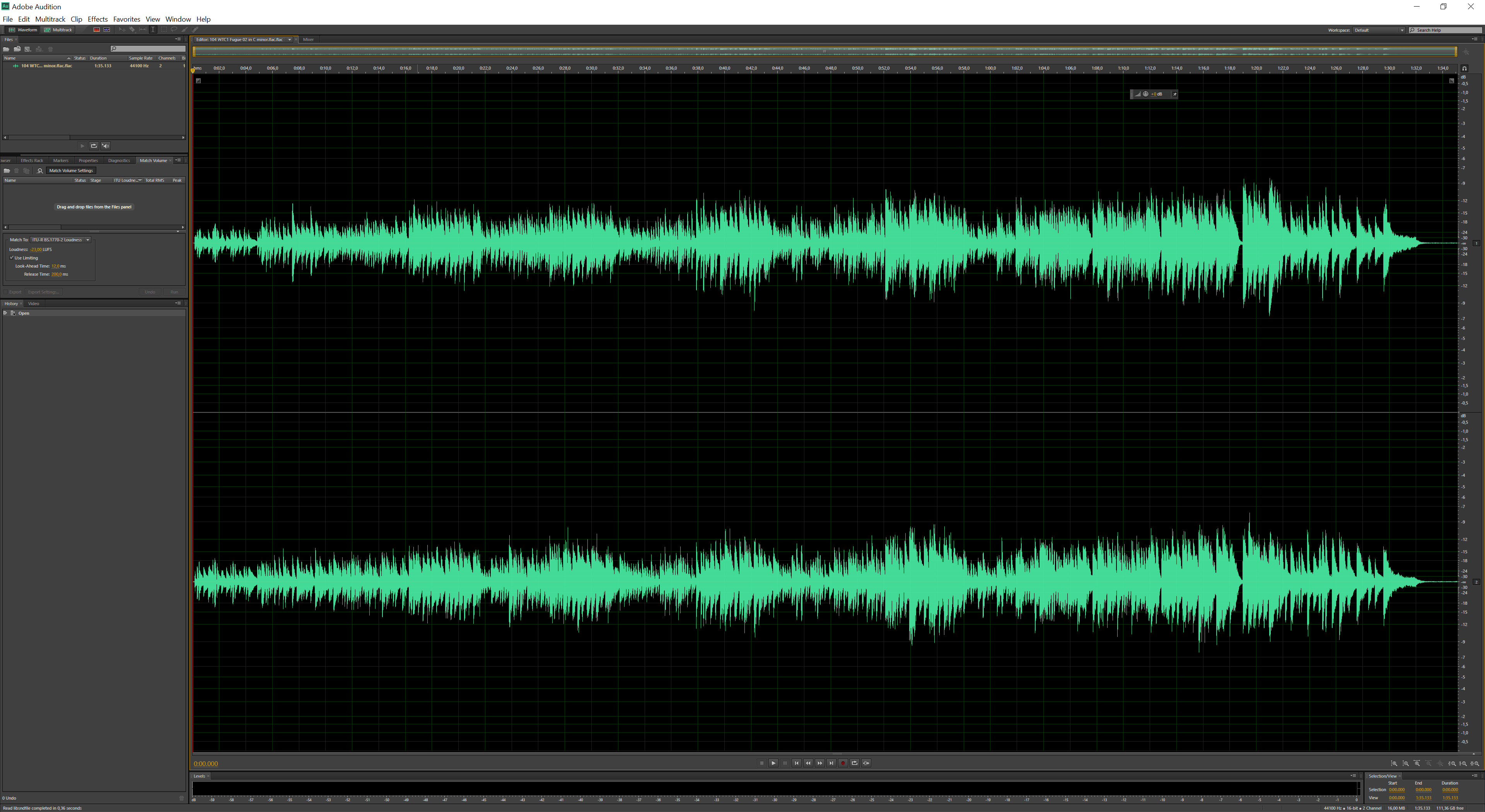 Screendump van Adobe Audition wat is een digital audio workstation (DAW).