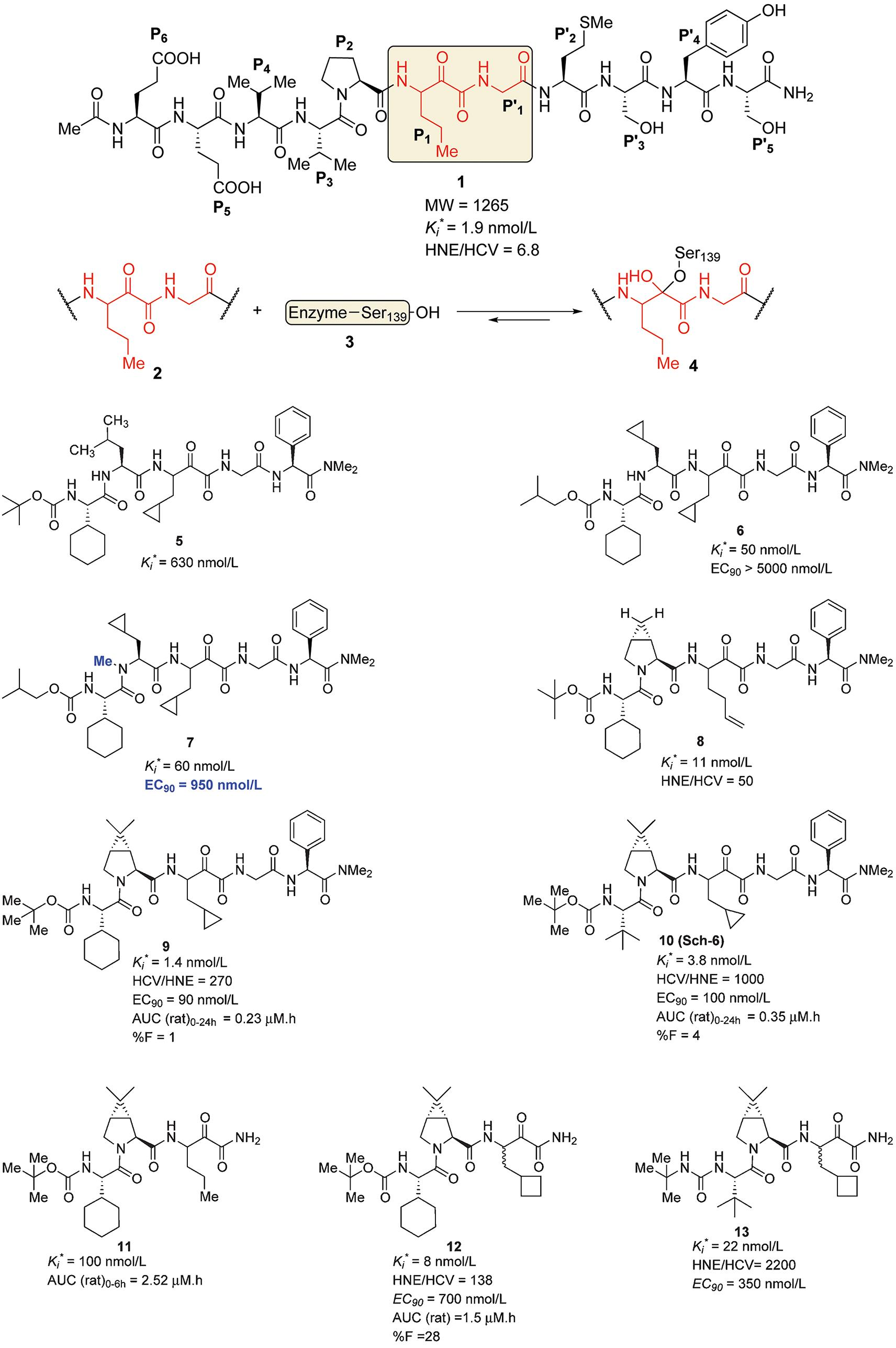 The Discovery And Development Of Boceprevir Amp A Novel