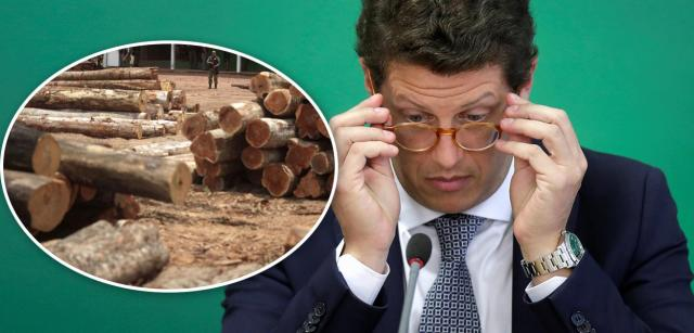 Desmatamento e Ricardo Salles