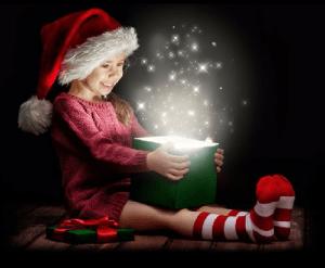 Bingemans Gift of Lights