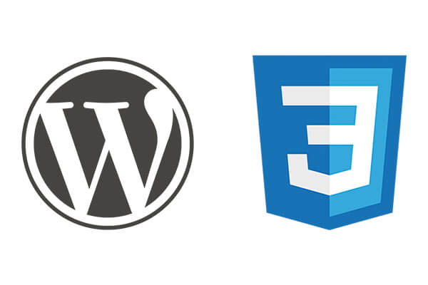 The Easy Way to Add Custom CSS in WordPress