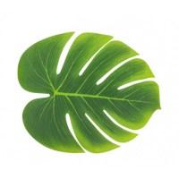 Lot de 3 feuilles tropicales de 29cm x 35cm
