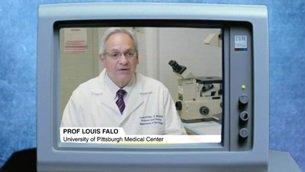 prof. LOUIS FALO