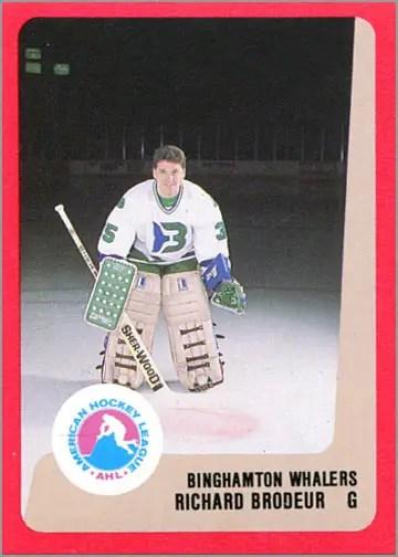 1988-89 ProCards AHL/IHL - Richard Brodeur