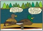 Card 'Toons: Duck Season