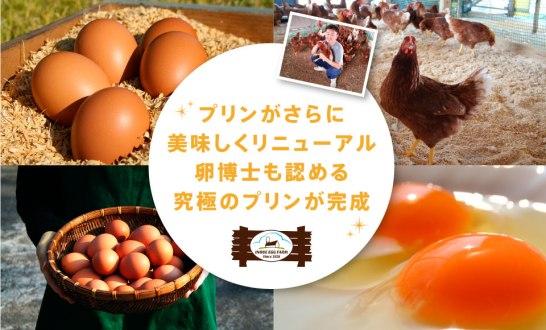 bannar_egg