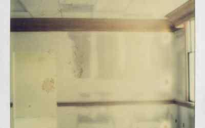Tapes: Orchid Mantis – 'Midi Memory'