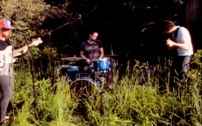 Video Premiere: Stray Fossa – These Days (live In Our Garden)