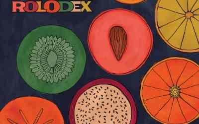French Cassettes release Brilliant Album: Rolodex