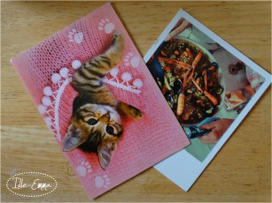 Incoming postcards from Finland and the Netherlands