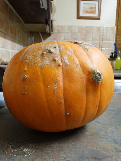 Photo - Pumpkin Carving (1)