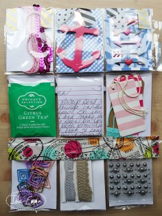 Photo - June 2016 - Incoming - Pocket Letter and Surprises (6)