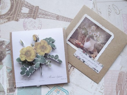 Photo - May Card Making (2)