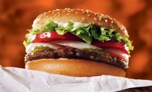 28 de mayo día de la hamburguesa