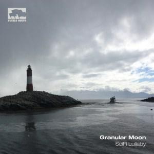 pn142 Granular Moon