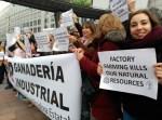 Movimientos vecinales y organizaciones denuncian en Europa la proliferación de la ganadería industrial en España