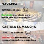 Y en Castilla-La Mancha ¿para cúando la moratoria a las macrogranjas?