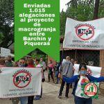 Presentadas más de un millar de alegaciones al estudio de impacto ambiental de la macrogranja de Barchín y Piqueras